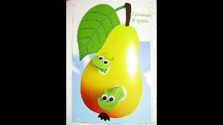 Гусеницы  в  груше и яблочко в разрезе