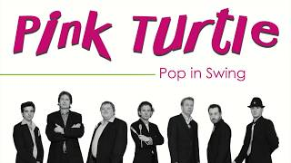 Watch Pink Turtle Walk On The Wild Side video