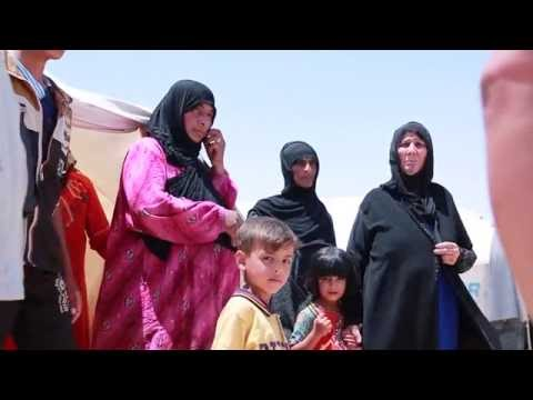 Iraq: UNHCR delivers aid to Iraqis fleeing Falluja