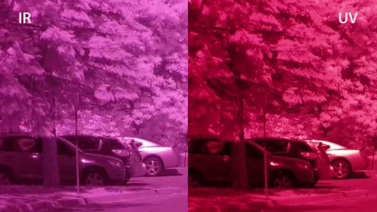 Ribcage: Infrared and Ultraviolet footage