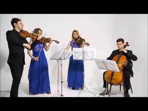 PERFECT (Ed Sheeran) String Quartet Cover By The Endymion String Quartet