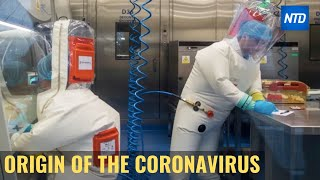 The Origin Of The Coronavirus | Ntdtv