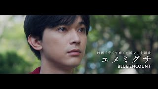 BLUE ENCOUNT 『ユメミグサ』Music Video(Movie Ver.)【映画『青くて痛くて脆い』主題歌】