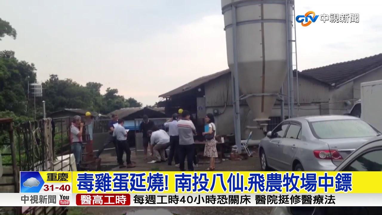 毒雞蛋延燒! 南投八仙.飛農牧場中鏢│中視新聞 20170823 - YouTube