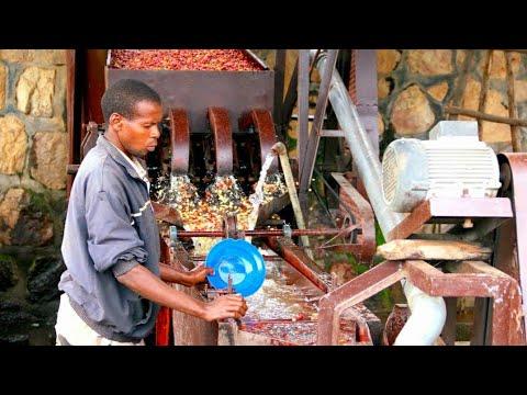 EAST AFRICA: Double fermentation process