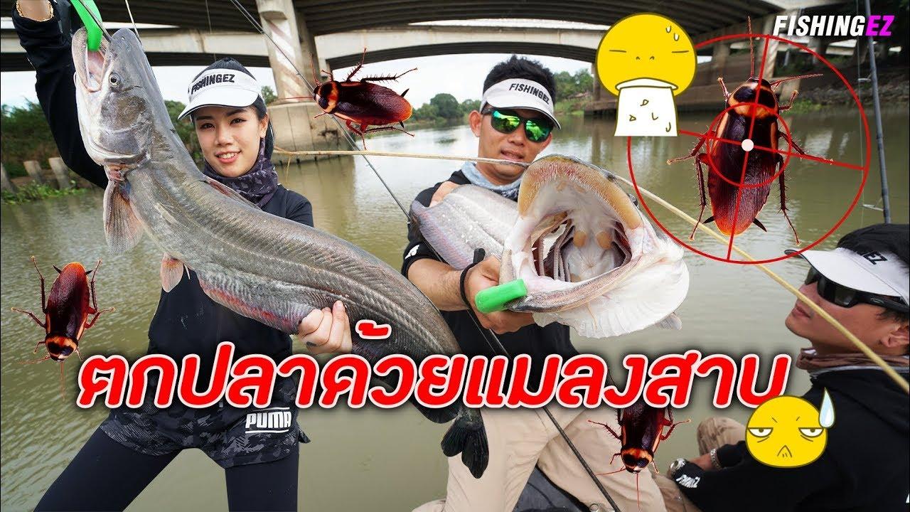 จับ..แมลงสาบ!!!  ไปตกปลาแม่น้ำเจ้าพระยา FISHINGEZ