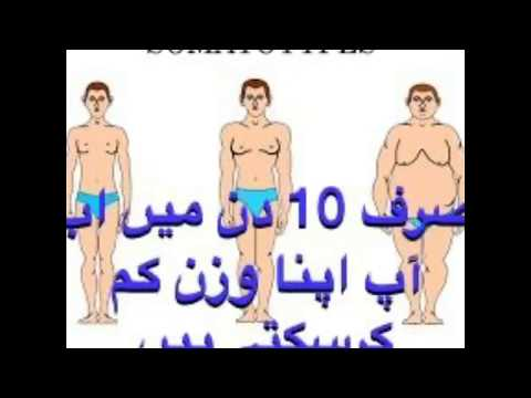 HOW TO LOSE WEIGHT FAST 10Kg in 10 DAYS | 900 Calories Egg diet plan