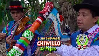PRIMICIA TORIL 2020 CHIWILLO DE PUJAS TEMA :CUYAY COMADRE
