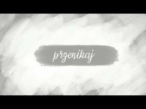 Michał Król - Przenikaj (AKU ELE) - LYRIC VIDEO