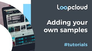 Adding Your Own Samples - Loopcloud 5 Tutorial