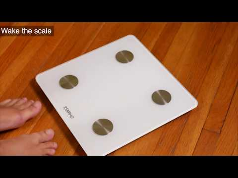 How to Avoid Inaccurate Weight Readings with Renpho Scales?