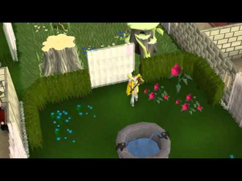 Runescape Catfight Levitate Rofl And Breathe Fire Emotes Youtube