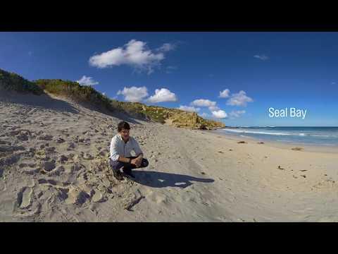 Explore Kangaroo Island in 360