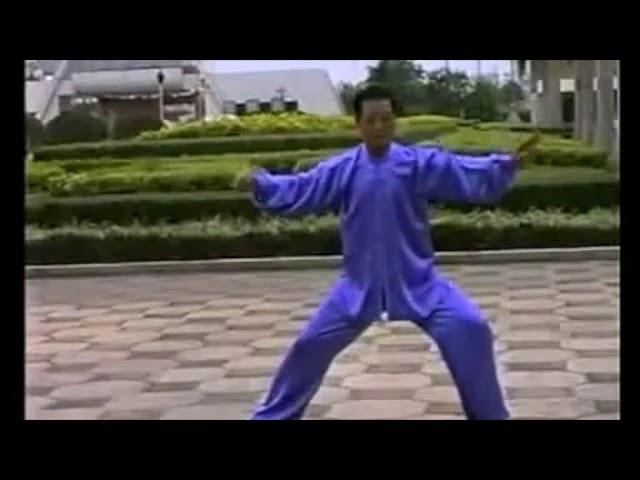 Zhang Mao Zhen - Tai Chi style Chen Xinjia Yilu [陈氏太极拳新架 Taijiquan style Chen]
