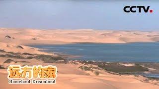 《远方的家》 20200109 一带一路(532)纳米比亚 沙海相连之地| CCTV中文国际
