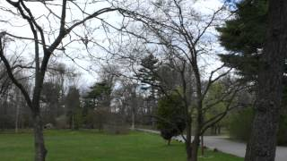 Bartow-Pell Mansion Museum & Gardens