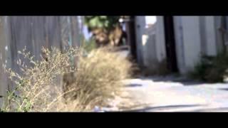 Смотреть клип Freeway & The Jacka Ft. Freddie Gibbs & Jynx - Cherry Pie