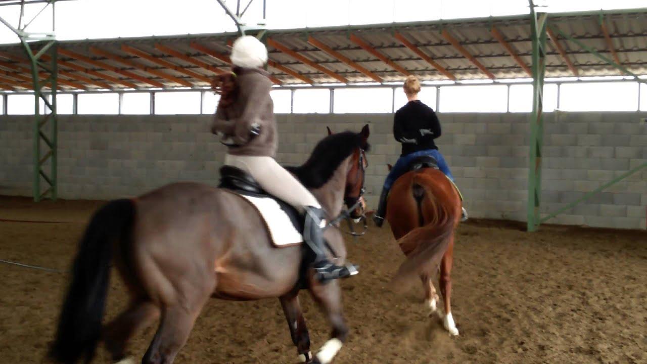 térdfájás lovaglás közben)