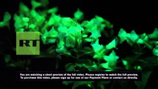 Japan: Check out these flowers that GLOW in the dark