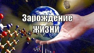 Зарождение жизни! История развития жизни на земле. лекция 2.