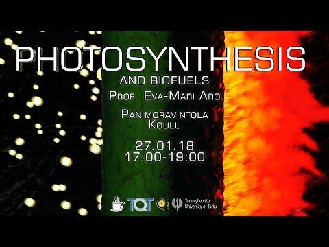 Science Cafe Turku - (Eva-Mari Aro) - Photosynthesis and Biofuels