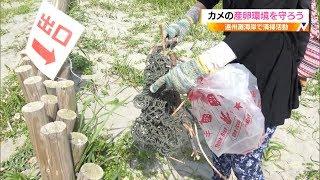 アカウミガメが安全に産卵出来る砂浜を確保しようと浜松市の遠州灘海岸...