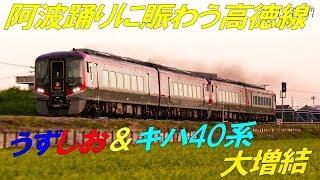 【4K 60P】キハ185・2000系・2600系三種の特急うずしおとキハ40系 2019年阿波踊り増結の記録