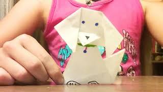 Делаю оригами  кошки и собаки