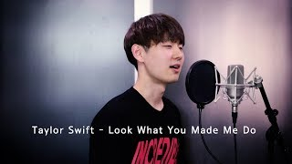 Taylor Swift - Look What You Made Me Do [Cover By Dragon Stone]