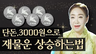 단돈 3000원으로 할 수 있는 재물운 급상승 시키는 비방법 / 돈들어오는그림 [풍수] [서울유명한점집 용한…