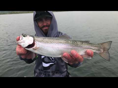 Trout Fishing -- 5-23-19 Chatfield Res