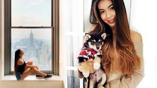 Nové štěně a žádost o ruku v New Yorku!  | VLOG