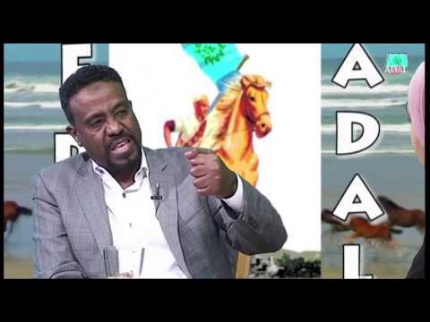 tv Adal v51   2016 12 23 English