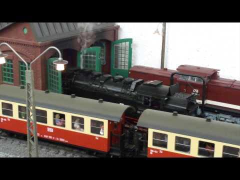 HSB (Garten)Bahn, 19.06.2015