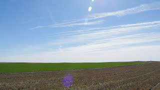 Van Mark Farms | Soil Management on Wyoming Farms and Ranches