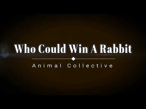 Animal Collective - Who Could Win A Rabbit (Lyric Video) [HD] [HQ]
