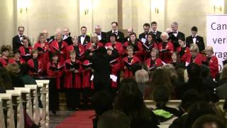Prague Day 6: Concert at St. Salvator: Prague Mixed Choir