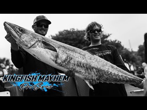St Augustine Kingfish Mayhem Weigh-in GIANT 60 Lb KINGFISH | Meat Mayhem Tournaments