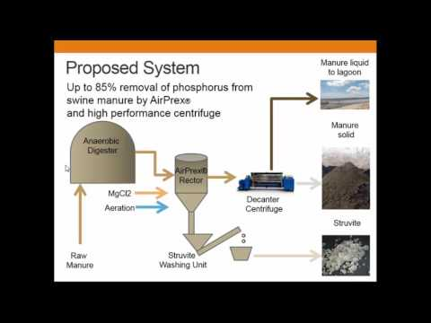 Decanter Centrifuge And Struvite Recovery For Manure Nutrient Management  - Hiroko Yoshida