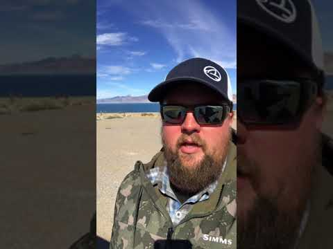 Pyramid Lake Fly Fishing Report For Early March 2018