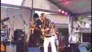 Merrell Fankhauser and Willie Nelson - Wipe Out