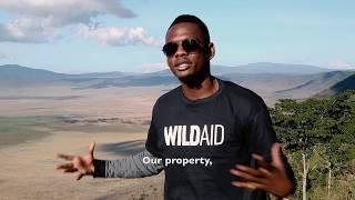 WILDAID Ben Pol Documentary (Ngorongoro, Tanzania)