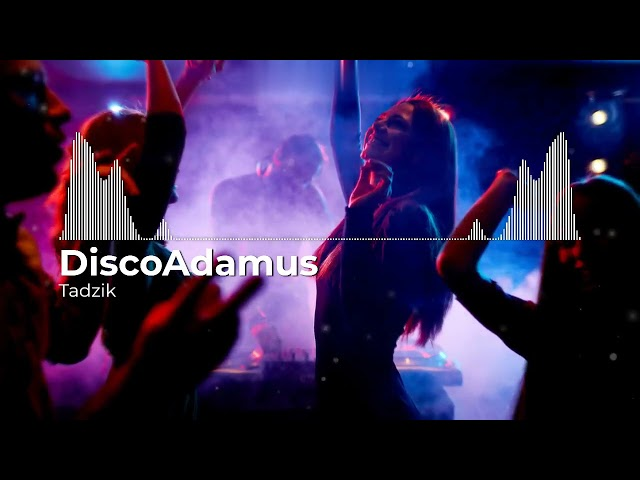 DISCO ADAMUS - Prywatka u Tadka (Oficjalny audiotrack)