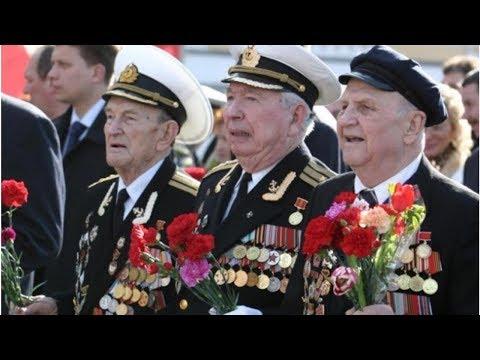 Стало известно, сколько ветеранов Великой Отечественной войны осталось в России
