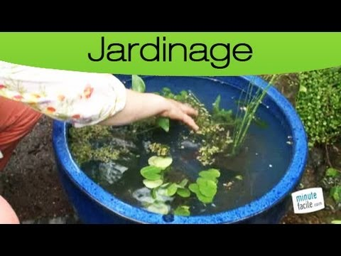 youtube bassin de jardin