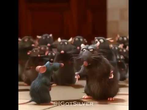 Oh Shit A Rat Ratatouille Youtube