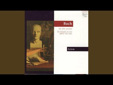 Sonata no.4 in A minor (originally in E minor) BWV528: Adagio-vivace