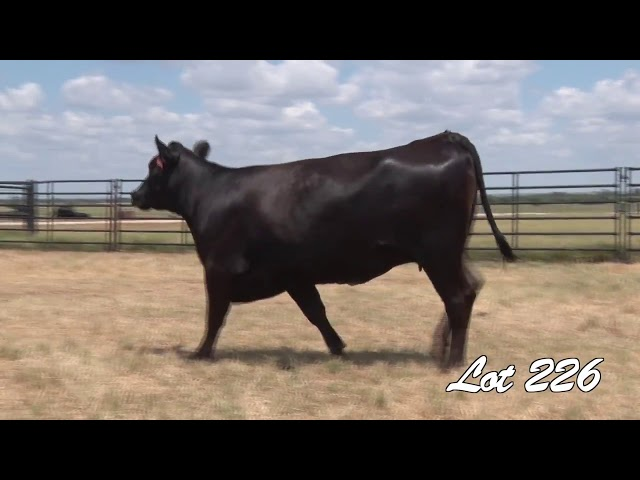 Pollard Farms Lot 226
