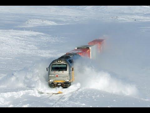 Live Train - Cab View