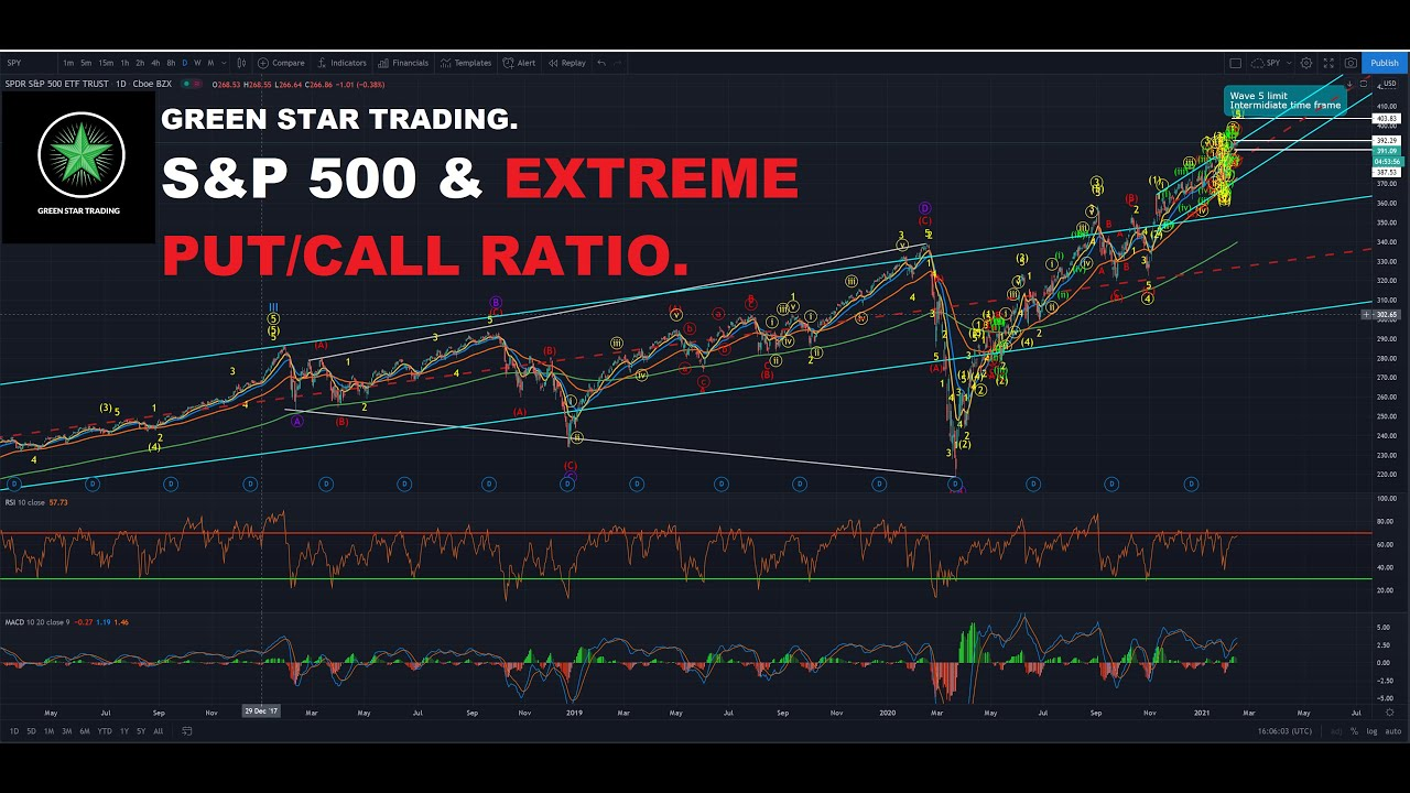 S&P 500 & EXTREME PUT TO CALL RATIO.